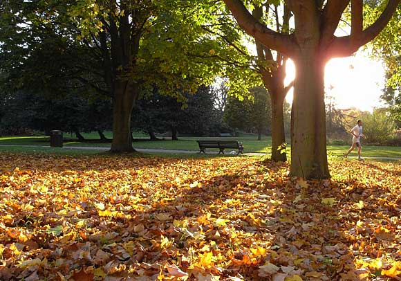 Autumn in Regents Park in London