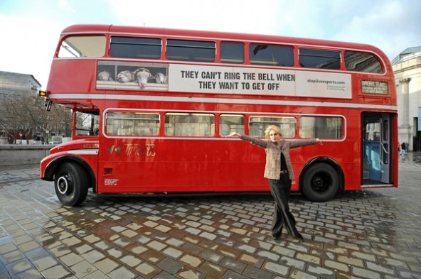 Joanna Lumley launches live exports bus campaign