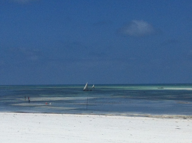 Clear blue sea and white sand beach, Zanzibar